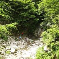 庵座の大滝